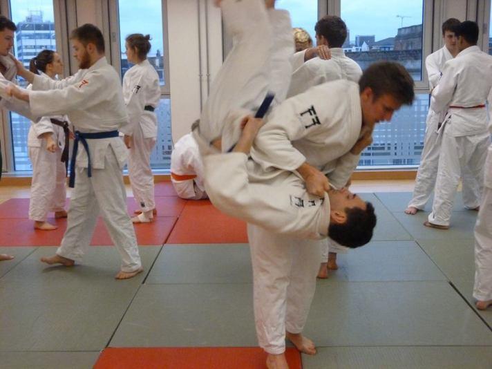 judo e